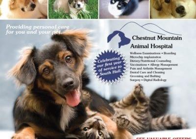 Chestnut-Medical-Animal-Hospital2